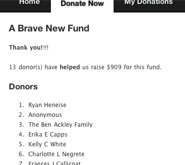 Customizing Donor Tools Fundraising Pages 2