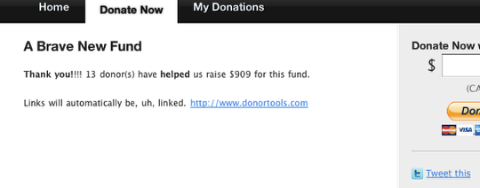 Customizing Donor Tools Fundraising Pages 7