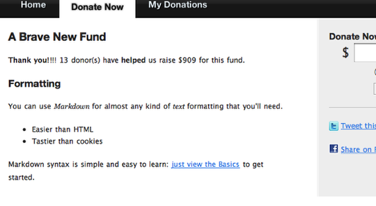 Customizing Donor Tools Fundraising Pages 9